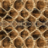 Fragment of real  reptile skin — Stock Photo