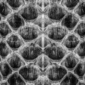Black reptile skin — Stock Photo