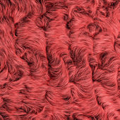 Painted red natural fur closeup — Stock Photo