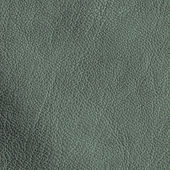 Gray-green leather texture — Stock Photo