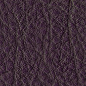 Violetleather — Stock Photo