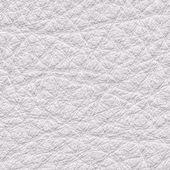 White leather — Photo