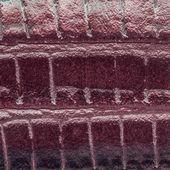 Vinous snake leather — Stock Photo