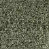 Gri deri — Stok fotoğraf