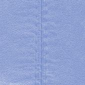 Niebieski skóra — Zdjęcie stockowe
