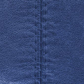 Couro azul — Foto Stock