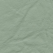 Pale green leather — Stock Photo
