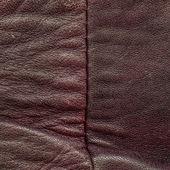 皱皱巴巴的皮革 — 图库照片