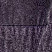 Crumpled leather — Stock Photo