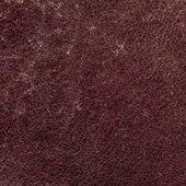 Worn leather — Stock Photo
