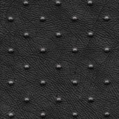 Perforated leatherette — Stock Photo