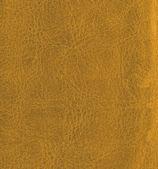 Leather texture — Stock Photo