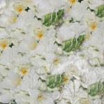White wedding flowers — Stock Photo #8864113