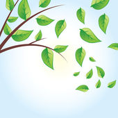 Vector green tree, green leaves — Stock vektor
