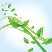 Foglie verde vettoriale — Vettoriale Stock