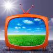 Grass on TV — Stock Photo