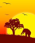 Illustration of African animals in savannah — Stock Photo