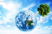 Tree on the planet — Stock Photo