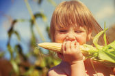 Little girl eating corn  — Stockfoto