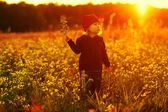 Laughing small girl with field flowers — Stockfoto