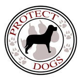 Protect dogs — Stock Photo