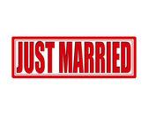 Gerade geheiratet — Stockvektor