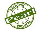 Perla — Vettoriale Stock