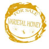 品种蜂蜜 — 图库矢量图片