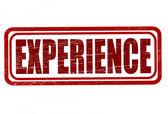 Doświadczenie — Wektor stockowy