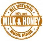 Milk and honey — Stock Vector #44503951