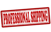 Professional shipping — Stock Vector