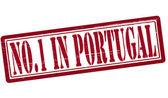 没有人在葡萄牙 — 图库矢量图片