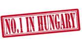 No one in Hungary — Stock Vector