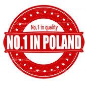 No one in Poland — Stock Vector