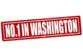 No one in Washington — Stock Vector