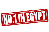 No one in Egypt — Stock Vector