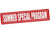 Speciella sommarprogram — Stockvektor