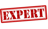 Expert — Stock Vector