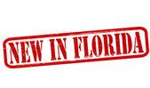 New in Florida — Stock Vector