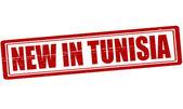 Nuovo in tunisia — Vettoriale Stock