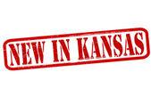 New in Kansas — Stock Vector