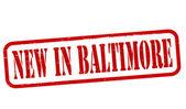 New in Baltimore — Vector de stock