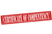 Certificate of competency — 图库矢量图片