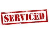 Serviced — Vettoriale Stock