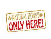 Miele naturale — Vettoriale Stock