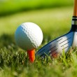 Playing golf. Golf club and ball. Preparing to shot — Stock Photo #10870162