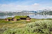 Maisons summmer norvégien — Photo