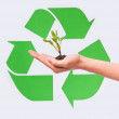 Little plant in hand with the recycling symbol — Stock Photo