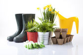 Garden tools with flowerpots isolated on white — 图库照片