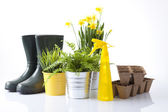 Garden tools, boots and spring flowers — Stock Photo